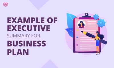 Executive Summary Example For A Business Plan