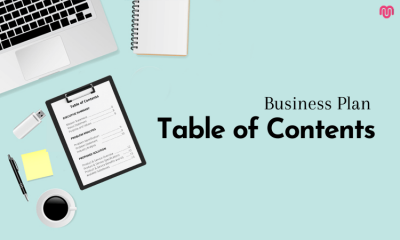 Business Plan Table of Contents – Explained with Example