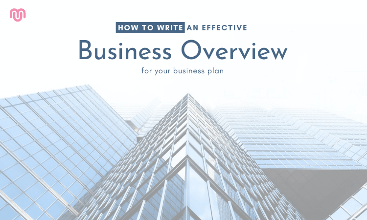 How to write an effective business overview for your business plan