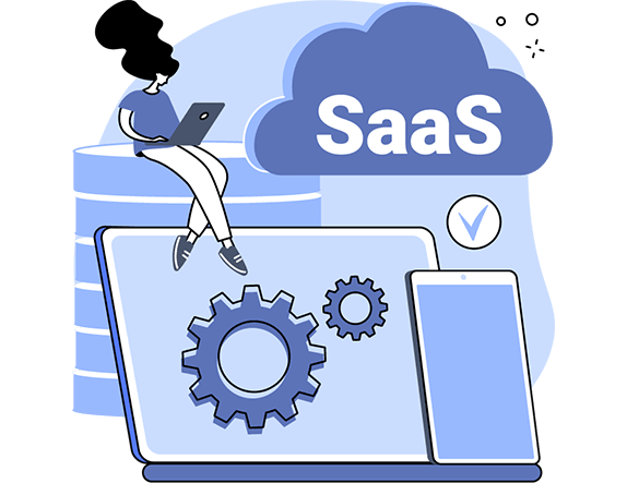 Types of saas product