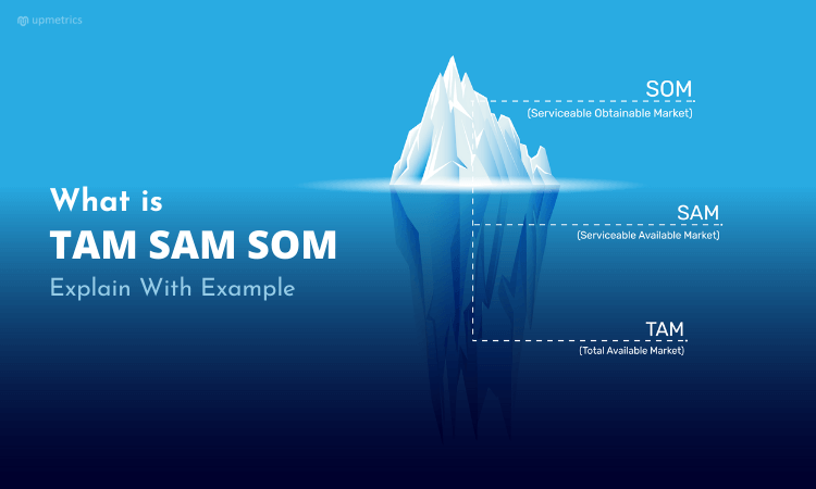 How TAM SAM SOM, market-size metrics can help to understand your business potential