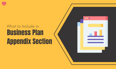 What to Include in Your Business Plan Appendix Section