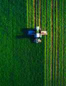 Farm and Food Production Business Plans